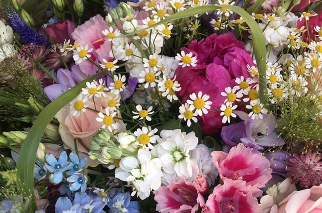 Wonderful selection of fresh flowers in The Flower Shop Bruton