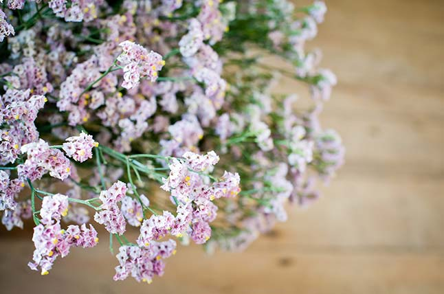 Pink flowers to decorate an event - The Flower Shop Bruton, Somerset